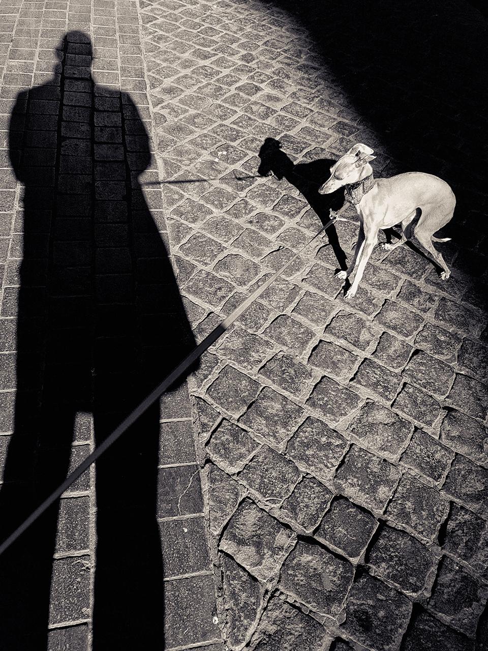 PixelShadow1