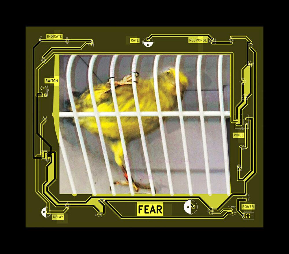 KHeaton_FEAR